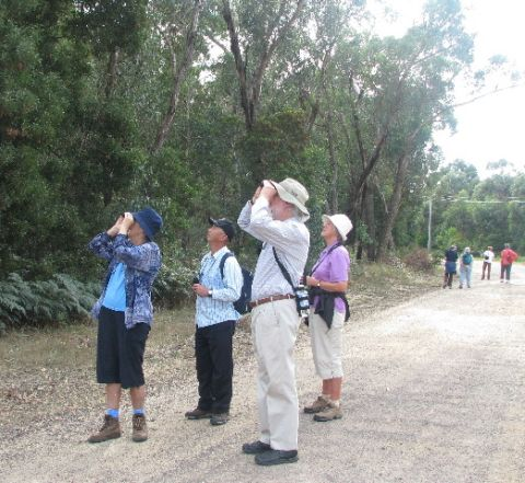 April bird walk