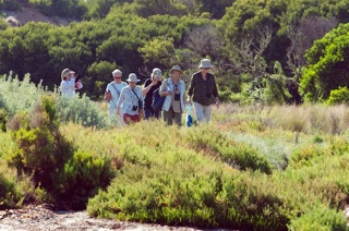 Breamlea bird walk
