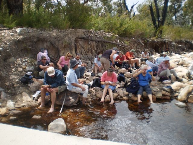 Cooling off, lunch stop at crossing of Mt William Creek with Mitchell Road