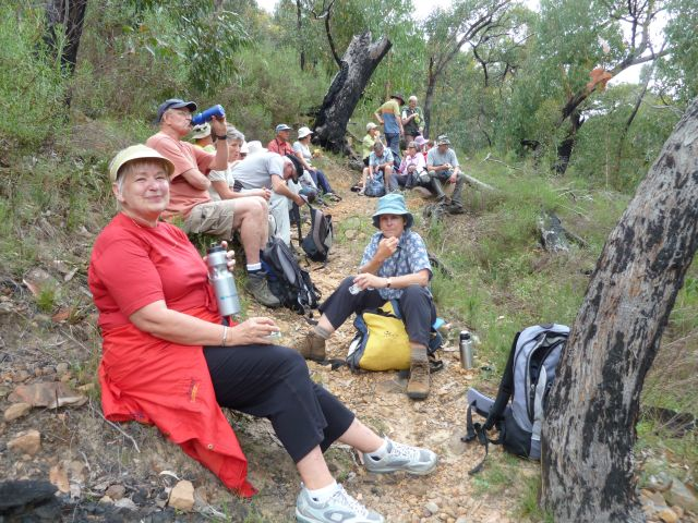 Morning tea - on the way down - still easy