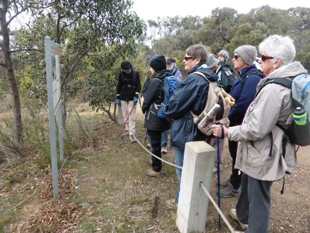 At Mt Ingoldsby, reading about the Anglesea Heath