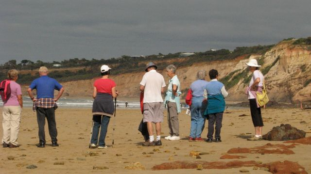 Returning along our gorgeous Anglesea beach