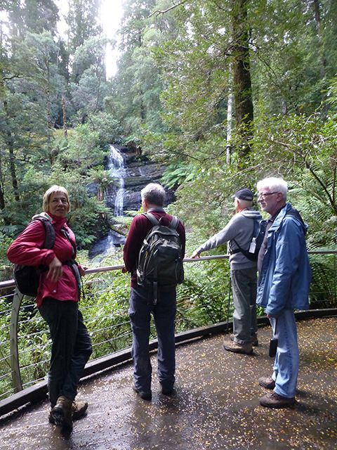 Triplet Falls with group