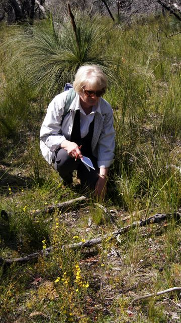 Kaye with Southern Spider Orchid