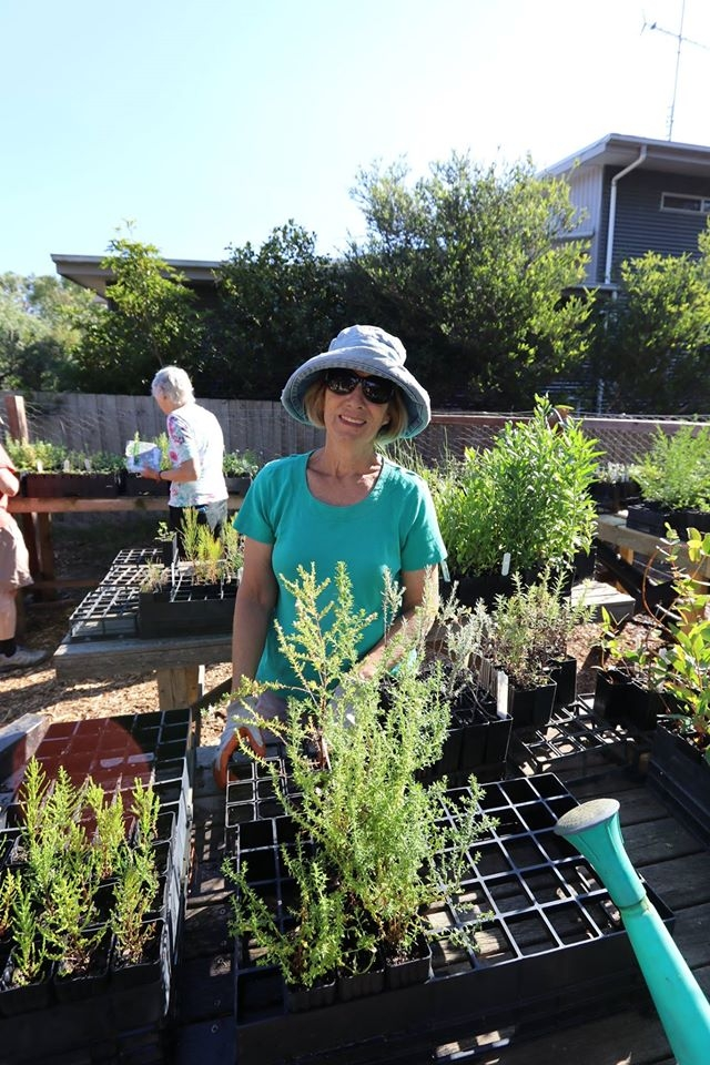 Janet checking plants